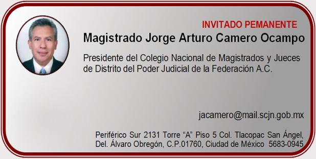 Magistrado Jorge Arturo Camero Ocampo
